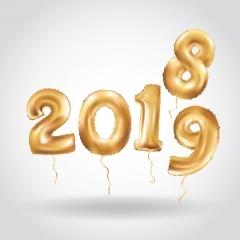 Terugblik en vooruit kijken 2018/2019